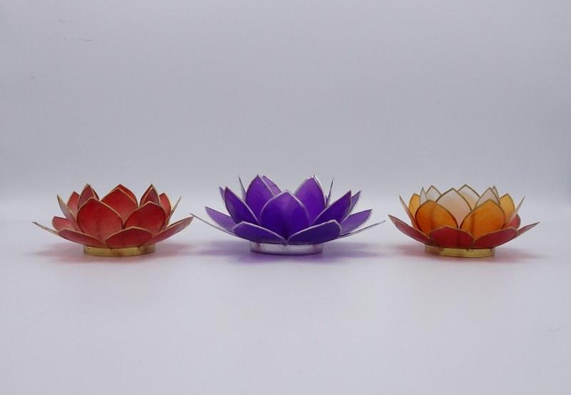 Eerlijk & Werelds lotusbloem capiz schelp